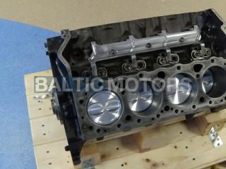 5.0 L V8 - 1990-2018 MERCRUISER, VOLVO PENTA, OMC Short block